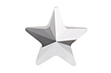 4745 Star Fancy Stone 10 мм - Comet Argent Light (#001CAL)